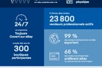 Infographie Vendeurs Francais