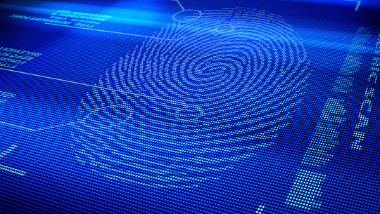 Fingerprint_inc